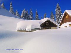 Winter sleep - hibernacin (Rolf Enderes) Tags: schnee winter snow alps nieve berge