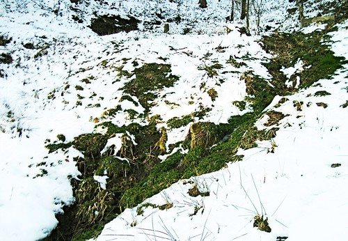 Neve em Alpirsbach