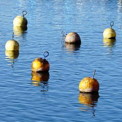 buoy meeting (duqueros) Tags: blue orange water yellow composition river square schweiz switzerland wasser suisse blau svizzera fluss rhein spiegelung buoy reflektion relections steinamrhein boje svizra buoyant kantonschaffhausen duqueiros
