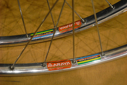 ARAYA GOLD NJS (WORLD CHAMPION)