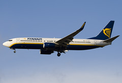 EI-DAG - 29940 - Ryanair - Boeing 737-8AS - Standsted - 071201 - Steven Gray - IMG_7491