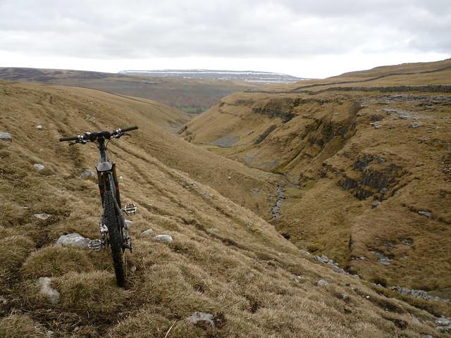 swaledale single men Swaledale merino black welsh mountain hampshire down icelandic perendale romney lincoln corriedale dorper texel cotswold.