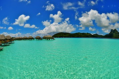 The Pearl... (fotos by greg) Tags: blue green water beautiful nude french nikon warm pacific south diving resort clear sharks pearl tahiti borabora justclouds