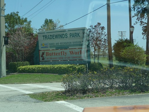butterfly world.
