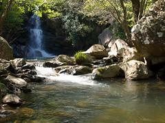 Garganta - 080 (xotico) Tags: verde agua sierra sur gibraltar senderismo algeciras cascada alcornoque lento alcornocales rio andalucia xotico capitan xoticosphotos