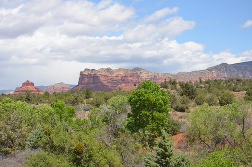 Arizona 2011 498