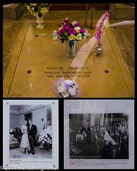 Princess Grace (Grace Kelly) Collage (wanderingYew2) Tags: monaco gracekelly princessgrace fujixpro1