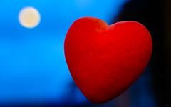 La patience du Coeur (Alexandre LAVIGNE) Tags: louisengival pentaxk20d smcpentaxm50mmf17asahi coeur ambiance bleu nuit reflet rouge