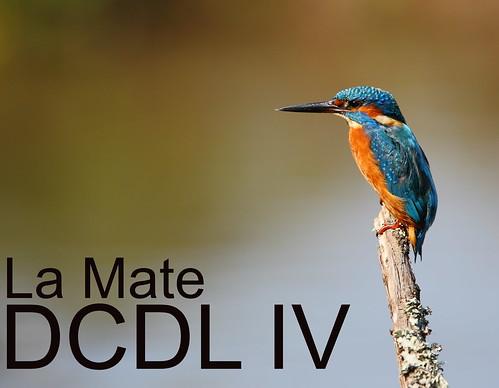 DCDL IV