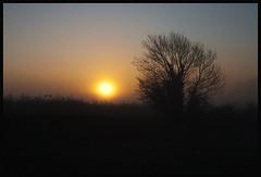 Hasland Sunrise