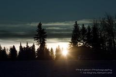 Elk Island (philinalberta) Tags: park trees sun clouds sunrise canon woods edmonton wildlife alberta elkisland naturepark rebelxti astotinlake