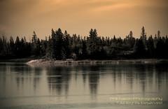 Elk Island-8 (philinalberta) Tags: trees sky water sunrise canon nationalpark edmonton alberta elkisland lightroom rebelxti astotinlake