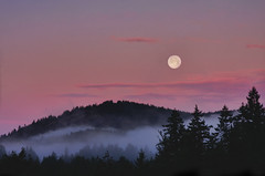 Full Moon at Dawn (Peggy Collins) Tags: moon fullmoon dawn color colorful pink fog mist misty silhouette trees mountain sky landscape daybreak clouds cloudy pastel penderharbour sunshinecoast britishcolumbia canada peggycollins paradise serene tranquil peaceful serenity calm absolutelystunningscapes explore frontpage interestingness bluemoon impressedbeauty gettyimagescanada