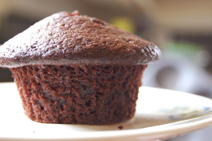 Chocolate cupcake or mushroom??