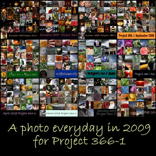 Project 3661 Mosaic