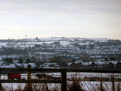 White out to the Hills (quintinsmith_ip) Tags: winter white snow animal blanket boldon hourse turnershill boldonhills