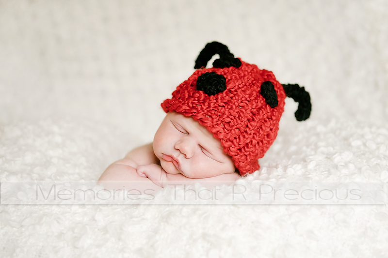 Sweet lady bug