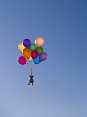 Day 365: The End (-Snugg-) Tags: blue portrait sky colors balloons puppy theend bluesky adventure stuffedanimal end 365 pup itsover day365 driftingoff snugg 365toyproject snugglepup theendhascome