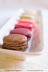 Macarons Ladure (L'esprit Sud Magazine) Tags: travel paris france dessert gourmet laduree macaroons macarons macaron ladure lespritsudmagazine gastronomymagazine