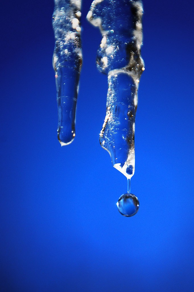 A water drop, just barely holding on to an icicle.