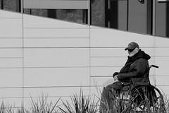 Disabled Vet (Chris_Lott) Tags: blackandwhite losangeles vet wheelchair homeless streetphotography veteran discoverla