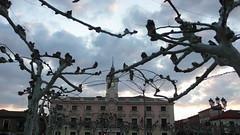 Ayuntamiento al atardecer (vcastelo) Tags: madrid plaza espaa atardecer spain ciudad nubes rbol puesta henares cervantes ayuntamiento pltano alcal