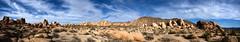 Joshua Tree Panorama 1 (-william) Tags: sky panorama rocks desert joshuatree redrocks perfectpanoramas d700