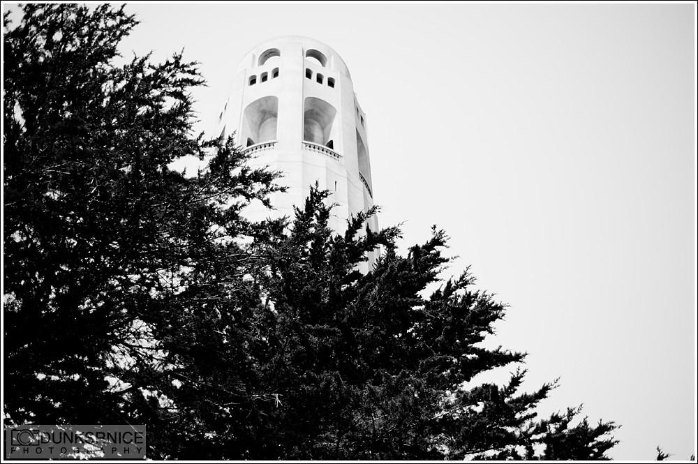 Coit Tower B&W.