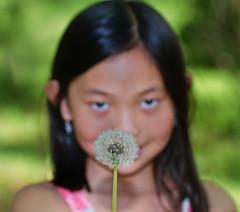 Little Dandelion Princess (bijoyKetan) Tags: family flowers portrait green girl beautiful boston manchester princess massachusetts dandelion host softbox ketan bekar polapain canonspeedlite430exii canonef100mmf28lmacroisusm bijoyketan