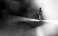 Macro Mondays - B&W (cuppyuppycake) Tags: macro mondays bw black white bnw bokeh miniature tiny figure