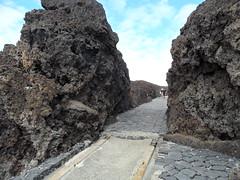 Tenerife 2017 (Montenero Livorno) Tags: tenerife costa adeje canarie lasamerica costaadeje isola