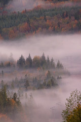 River of Mist (Peggy Collins) Tags: autumn trees mist mountain canada fall misty fog landscape interestingness searchthebest britishcolumbia fallcolors foggy autumncolors explore powerlines evergreens pacificnorthwest mountainside penderharbour sunshinecoast mapletrees evergreentrees mistymountain powerpoles verticallandscape peggycollins mapletreesinautumn mapletreesinfall spectacularlanscape