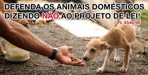 Defenda os animais domsticos  Vote NOOOO by pri_morad