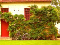 CHENONCEAU - Francia (cannuccia) Tags: landscape bikes paesaggi ohhh chenonceaux biciclette bretagna digitalcameraclub concordians flickraward travelsofhomerodyssey franciaq
