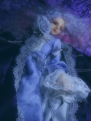 : Zhion with Rose Grand bleu (borometz) Tags: color art rose doll purple vampire gothic violet lavender fantasy bjd    custom volks 13  sakaki balljointdoll   sd13 60cm grandbleu kyotenshi    zhion