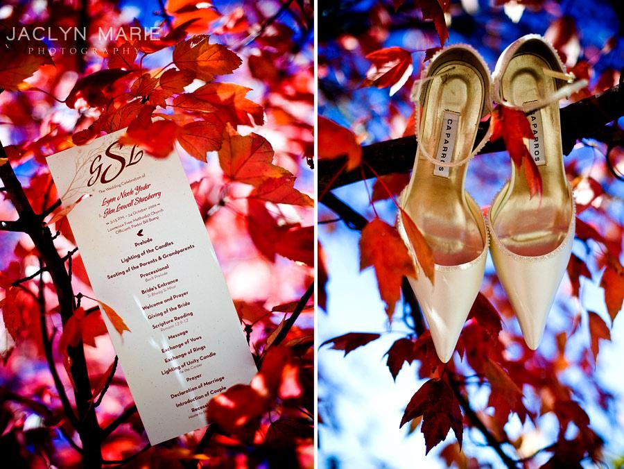 wedding shoes and program idea photo