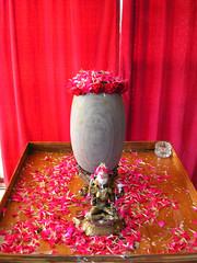 Home ShivaRatri    DSCN0335
