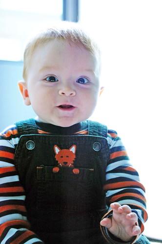 Baby Tommy Nov. 2009 012