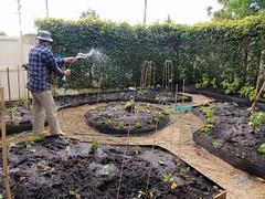 Une belle journée de jardinnage