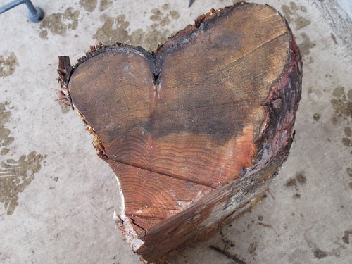 Heart shaped log