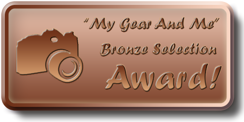 My Gear And Me - Bronze Selection Award