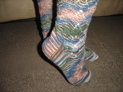 My Monkey's in Muddy Autumn Rainbow Socks that Rock