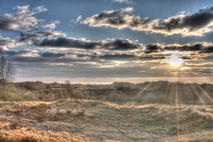 HDR morning landscape or Am I  overdoing it! (j_wijnands) Tags: nikon 28105mmf3545d hdr awd amsterdamse d300 photomatix waterleidingduinen bestof2009 kennemerlandzuid