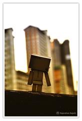 | Look I am Sliding down... | (Rajendran Rajesh™) Tags: singapore rr raj japanesetoy danbo d90 project365 rajeshpics dsc0801 danboard revoltechdanboard rajendranrajesh 365dayswithdanbo danboardinsingapore