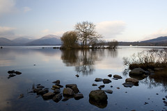 Island with trees, Loch Lomond (smir_001 (on/off)) Tags: trees winter sky lake reflection water clouds landscape island scotland december lakes loch lomond crannog