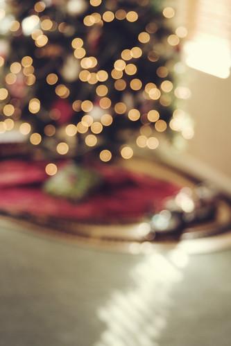 Christmas! [359/365]