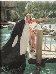 Ramu (Shamufan88) Tags: dolphins whales shamu rare orcas killerwhales