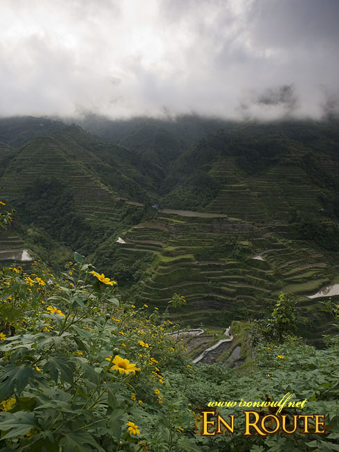 Banaue Rice Terraces Base View