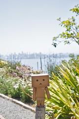 Danboard (darktiger) Tags: sf nature japanese bay robot manga suit cardboard alcatraz yotsuba danbo danboard actionfigure