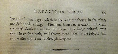 Rapacious Birds